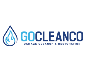 Go-Cleanco-Restoration-Franchise-Opportunity-300x247